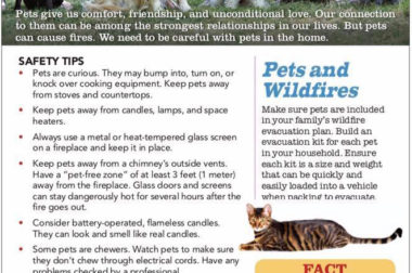 Pet Fire Safety Flyer